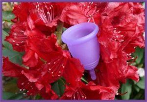 Начин на употреба на менструална чашка